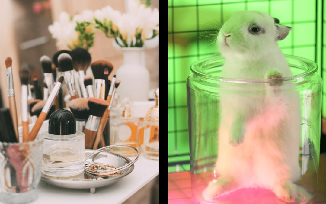 L'interdiction de l'expérimentation animale des cosmétiques