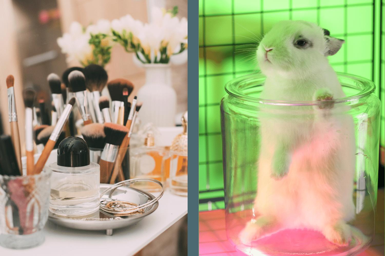 cosmetiques et experimentation animale