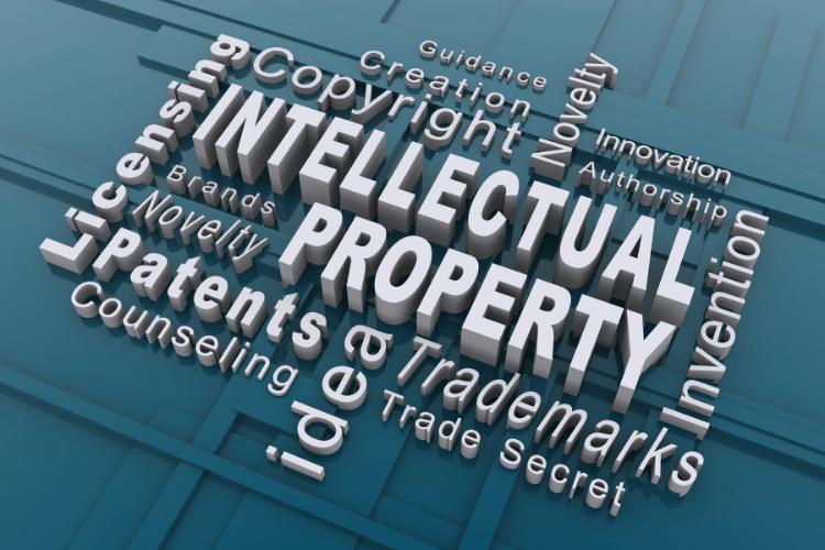 la protection des actifs immateriels par la propriete intellectuelle